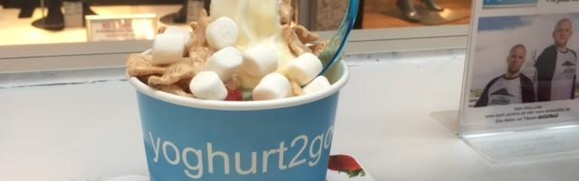 Frozen Yoghurt 1